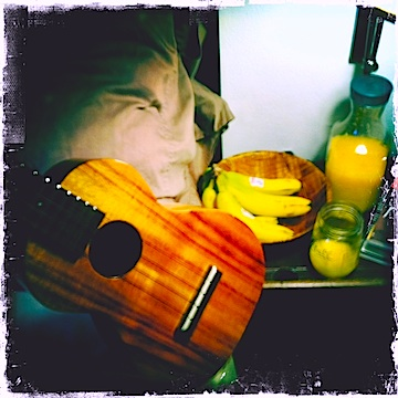 jason poole, kamaka ukulele, nyc, accidental hawaiian crooner