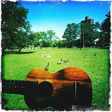 kamaka ukulele, ukulele, isham park, jason poole