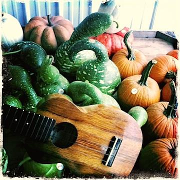 autumn, farmer's market, kamaka, ukulele, jason poole