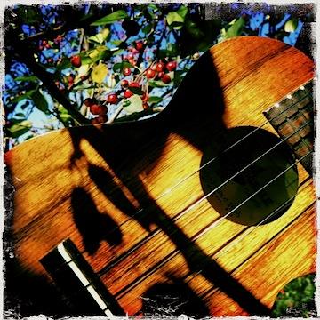 Kamaka 'ukulele, Inwood Hill Park, Jason Poole