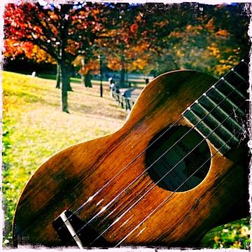 Kamaka ukulele, Inwood Hill Park, NYC Strummin' in the City, Jason Poole