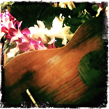 Kamaka ukulele, soprano ukulele, Jason Poole, May Day, Lei Day, urban strummer, strumminʻ in the city