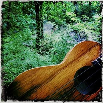 Jason Poole, Accidental Hawaiian Crooner, Kamaka, Kamaka ukulele, NYC, Strummin' in the City
